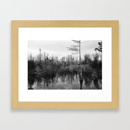 Mississippi Swamp Framed Art Print