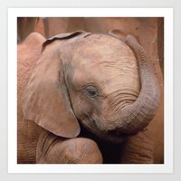 baby elephant Art Prints featuring Baby Elephant by Adelies