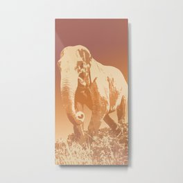 EVENING ELEPHANT Metal Print