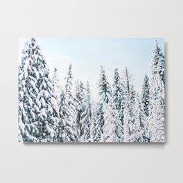 Snow Covered Trees, Winter Decor Metal Print