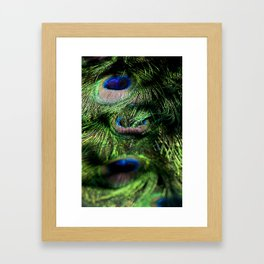 Peacock Tail Feathers #001 Framed Art Print
