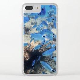 Fish School Underwater. Fishes underwater background. Clear iPhone Case