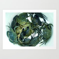 In the crab basket Art Print