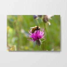 Bee Happiness Metal Print