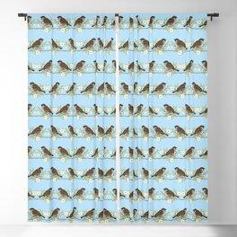 Sparrows Blackout Curtain