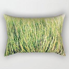 Tillinghast Place 07 Rectangular Pillow