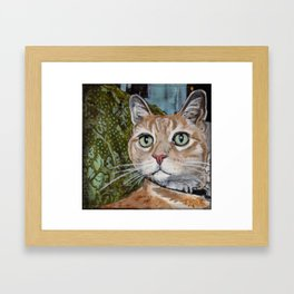 Handsome Orange Tabby Cat Framed Art Print