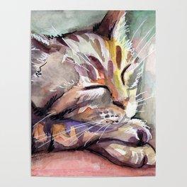 Cute Sleeping Kitten Watercolor Poster