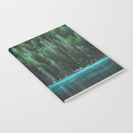 Forest 3 Notebook
