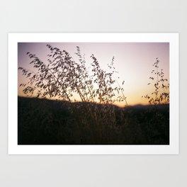i-5 sunset Art Print