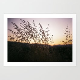 i-5 sunset Art Print