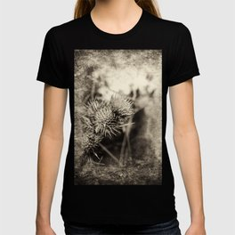 Beautiful thistle growing wild and sepia texture T-shirt