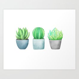 Succulent and Cacti Potted Garden Trio Art Print