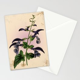Blue Salvia - Vintage styled seed packet Stationery Cards