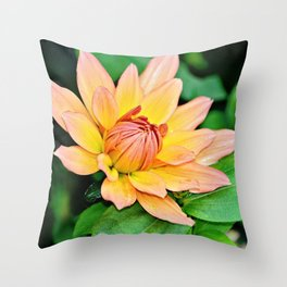 Blooming in Peach and Yellow Throw Pillow