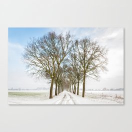 Snowy tree lined avenue Canvas Print