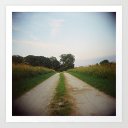Road, Holga Art Print