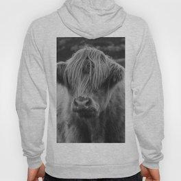 Highland cow III Hoody