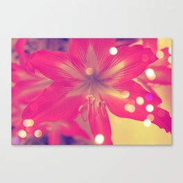 Secret Garden| Pink tigress  Canvas Print