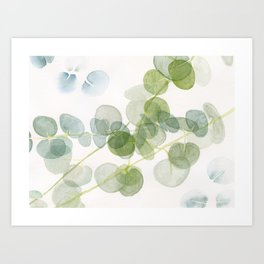 Abstract Eucalyptus Art Print