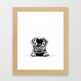 Black Pug Pup Framed Art Print