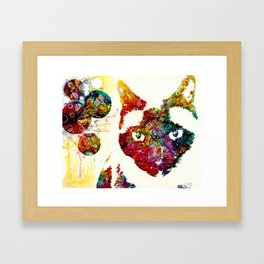 """""""I Can't Look At The Stars"""" Siamese Cat Framed Art Print"""