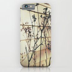 Branches Reflections Slim Case iPhone 6s