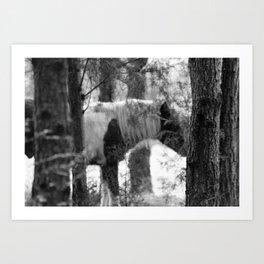 Ghost Horse Art Print