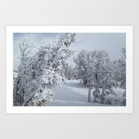 snow Art Prints featuring Snow by Chris Root