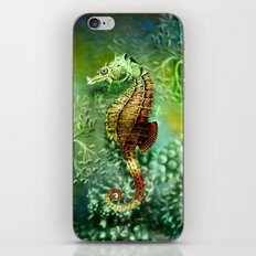 Seahorse Tropical Ocean Life iPhone & iPod Skin