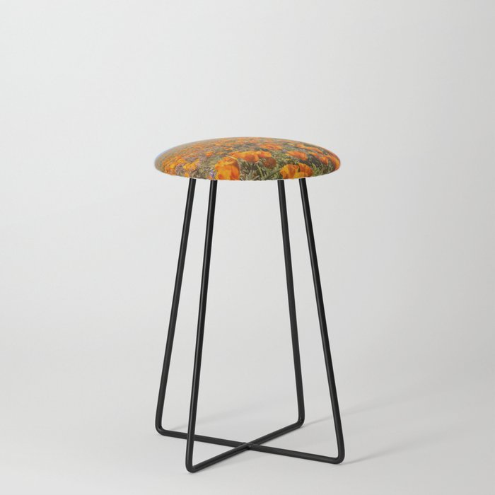 Blooming poppies in Antelope Valley Poppy Reserve Counter Stool
