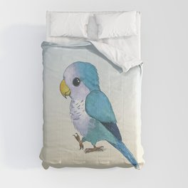 very cute blue quaker parrot Comforters