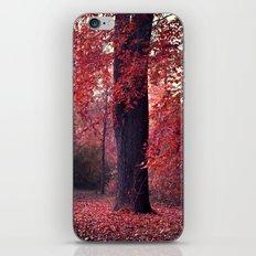 arbre iPhone & iPod Skin