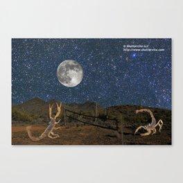 Sonoran Desert Volleyball Canvas Print