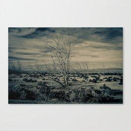 Taken Canvas Print