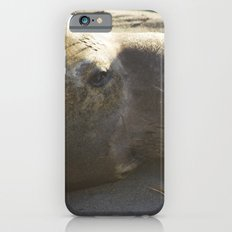 Elephant Seal: Contemplation iPhone 6s Slim Case