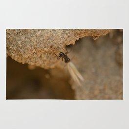 Romantic Ant Rug
