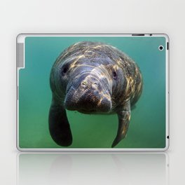 Little Manatee Laptop & iPad Skin