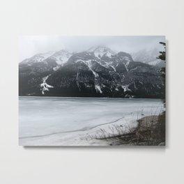 Cold Beauty Metal Print