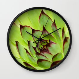 Flower succulent plant Wall Clock