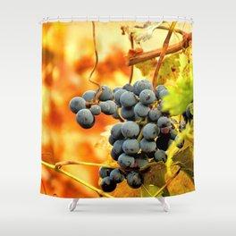 Grape Vines in Autumn Shower Curtain