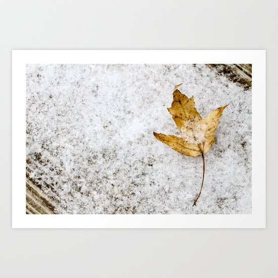 snow and a leaf Art Print