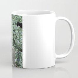 Barrel Cactus #2, Yellow Flowers Coffee Mug