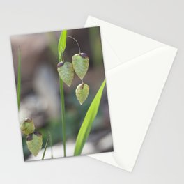 Quackers Grass Stationery Cards