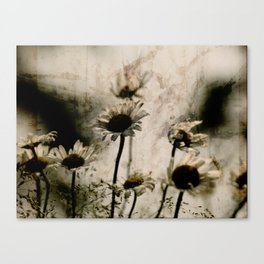 the blast Canvas Print