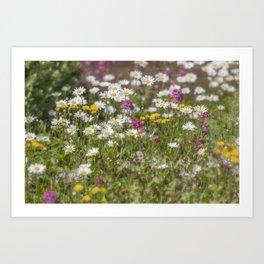Wild Flora Art Print