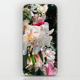 Rhododendron garden iPhone Skin
