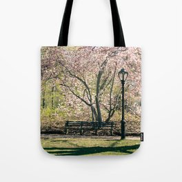 Magnolia's Bloom in Central Park Tote Bag