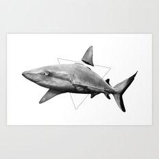 Shark Fin Art Print