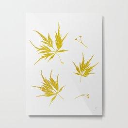 Gold Acer Metal Print